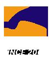 news-Tigerwings-img-34